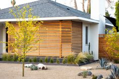 """yellow flowering and very drought resistant tree called """"Desert Museum Palo Verde"""" Modern Exterior, Exterior Design, Exterior Homes, Outdoor Spaces, Outdoor Living, Landscape Bricks, Landscape Steps, Fence Design, Patio Design"""