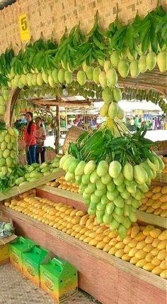 So delicious Mangoes.and fruit art. Fruit Plants, Fruit Garden, Fruit Trees, Colorful Fruit, Tropical Fruits, Fresh Fruits And Vegetables, Fruit And Veg, Beautiful Fruits, Delicious Fruit