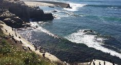 Stroll along one of the most picturesque parts of the San Diego coastline.
