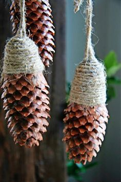 1 million+ Stunning Free Images to Use Anywhere Christmas Yard Decorations, Christmas Makes, Diy Christmas Ornaments, Rustic Christmas, Holiday Crafts, Christmas Time, Camp Decorations, Pine Cone Art, Pine Cone Crafts