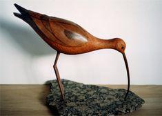 Mahogany Curlew