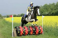 Diy x country jumps tyres