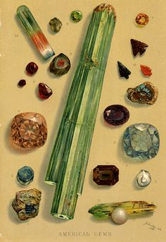 1888 Article/Engravings GEMS Precious Stones