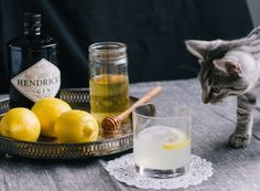 A sweet gin cocktail that will is sure to have you buzzing around! This classic Prohibition era drinkl doesn't have to be overly sweet either - modern