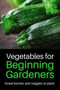 Vegetable Plants for Beginning Gardeners Best vegetables to plant for beginning gardening. Awesome ideas on what to grow in your beginner garden.Best vegetables to plant for beginning gardening. Awesome ideas on what to grow in your beginner garden. Vegetable Garden Planner, Raised Vegetable Gardens, Vegetable Garden For Beginners, Gardening For Beginners, Vegetable Gardening, Flower Gardening, Gardening Zones, Gardening Courses, Veggie Gardens