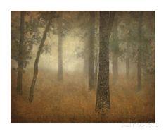 Oak Grove in Fog, Study 24 Giclee Print- Master BR