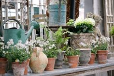 Petersham Nurseries Shop