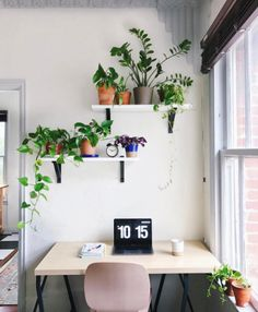 We love how @leefromamerica decorates her desk with fresh greenery. Talk about daily inspiration!