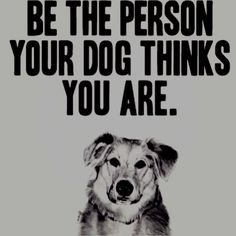Inspiring words of wisdom