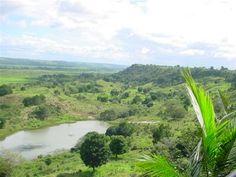 Sítio Em Porto Seguro - Lindo sítio localizado em uma belíssima reserva natural Linda vista do vale, Muitos coqueiros e diversas árvores Possui casa com 2 quartos 3 lagos...