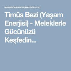 Timüs Bezi (Yaşam Enerjisi) - Meleklerle Gücünüzü Keşfedin...