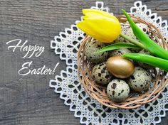 happy easter greeting cardeaster decoration with spring yellow tulip