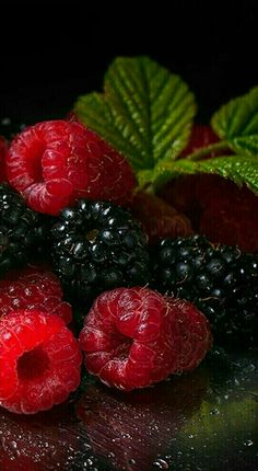 Berry important to eat your berries! Fruit And Veg, Fruits And Vegetables, Fresh Fruit, Colorful Fruit, Photo Fruit, Fruit Photography, Vegetables Photography, Life Photography, Beautiful Fruits
