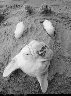 buried at the beach