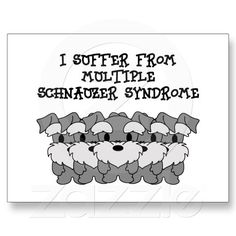 You can't have just one! :) How true this is!!!!!!!! #Schnauzer