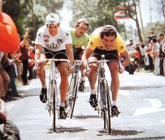 Phil Anderson, Bernard Hinault, and Freddy Maertens in the Back