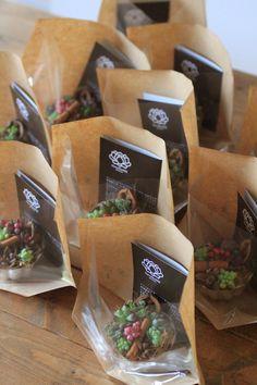 ゼリーカップ ミニ寄せ植え : 多肉植物寄せ植え販売 アトリエ華もみじ