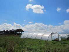 Solar Panels, Outdoor Gear, Tent, Ireland, Sun Panels, Store, Solar Power Panels, Tents, Irish