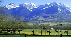 #Salmon #Idaho -- you really should visit.   Visitidaho.org   IDAHO   Pinterest   Salmon, Idaho and Sweet Home