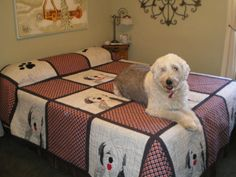 This is the finished quilt, with Flossie... The ole girl...