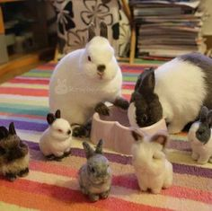 AMAZING NEEDLE FELTING! little buns are actually needle felted wool but they look so real!