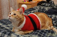 Get your feline friends into the festive holiday spirit by dressing them in a Santa suit of their very own! This crochet santa suit sweater is great for holiday photos or just for fun! Sizes include: Small (5-8lb) Medium (9lb-14lb) Large (15lb-20lb)  **As far as sizing goes, I mostly fit my sweaters by weight and average body sizes of cats. Because some cats have different shapes sometimes exceptions should be made. Crochet is very forgiving as far as stretching goes, but if you feel your…