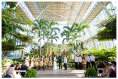 Jewel Box Wedding With A St Louis Zoo Reception In Spoiler Alert These Photos By Jophoto Are Gorgeous Missouri Says I Do Pinterest