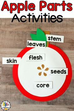 This packet of Parts of an Apple Activities is full of resources to help you teach and your students learn all about apple parts. There are hands-on activities including a parts of an apple reader, interactive notebook, cut and paste, fill in the blank, and template to make an apple parts craft. There are also parts of an apple resources including colorful posters and word wall cards with real-life pictures for you to hang in your classroom. Click on the picture to learn more! #partsofanapple