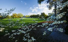 A tradition like no other, the Masters...  oops, how did that get here?  Well, we love golf and we love the majors.  Augusta is a bit far from Bend, but we think that course would be awesome to play on...