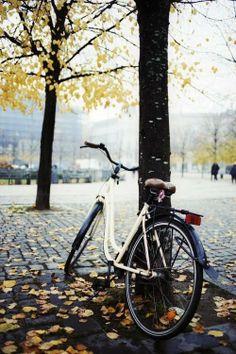 long cycle rides...