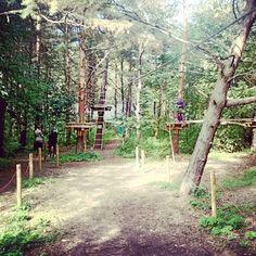 Adventure Park in Pirita #tallinn #estonia #adventurepark #pirita #forest #tallinna #viro #eesti #picoftheday #pictureoftheday #photooftheday #placestogo #placestovisit #baltics #europe #nokia #lumia920 #lumia920photography