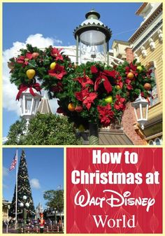 Planning a trip to Walt Disney World or just want the scoop on the fun & merriment that goes on in the parks? Here's how to Christmas at Walt Disney World. Disney World Resorts, Disney World Trip, Disney Vacations, Disney Parks, Disney Honeymoon, Disney World Christmas, Mickey Christmas, Christmas Travel, Disney Holidays