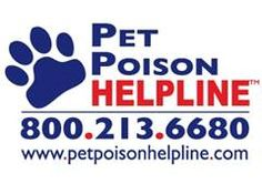 Keeping Pets Safe: Poison Prevention Week March 17-23
