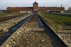 Auschwitz was the concentration camp that Josef Mengele volunteered at and did most of his experiments at.