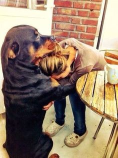 They are the best dogs!! My Monk has hugged me like this numerous times through the years. #rottweiler