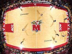#UMD #Maryland #Terps