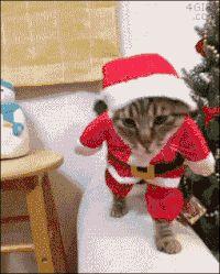 Santa clause prodigy http://ift.tt/2ki33XG