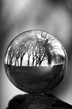 The Witches Ball 1 by felixspencer2, via Flickr
