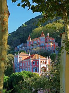 On a Hillside in Sintra  Framed by a pair of Sycamore trees, beautiful large old homes nestle in the hillside overlooking Sintra, Portugal.