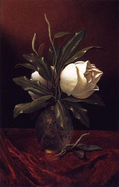 lyghtmylife:    Martin Johnson Heade  [AmericanHudson River SchoolPainter, 1819-1904]  Two Magnolia Blossoms in a Glass Vase,circa 1883-1900  oil on canvas  Morris Museum of Art(United States)