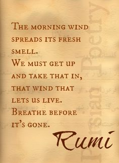 Wake up and no matter how hard, get up, breathe! Breathe in the fresh air. For this is the day the Lord has made!!