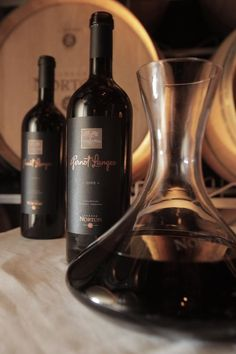 Gernot Langes represents Bodega Norton's top expression and, therefore, it was named after its owner.    This wine is made from a careful selection of the finest Malbec, Cabernet Sauvignon and Cabernet Franc grapes, picked from Bodega Norton's oldest vineyards.