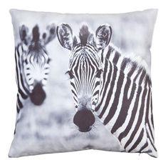 Sierkussen Zebra #leenbakker #terrasideeen