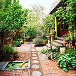 A great mix of surface mediums for the yard.