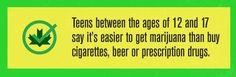 The insane economics of marijuana prohibition (infographic)