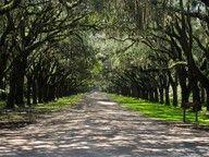 ~~Wormsloe Plantation - Savannah, GA~~
