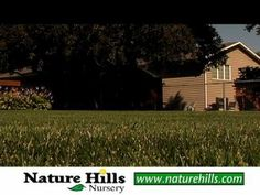 preparing your lawn for fall and winter - YouTube