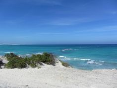 Arniston, South Africa Seascape Paintings, South Africa, Beach, Water, African, Outdoor, Image, Gripe Water, Outdoors