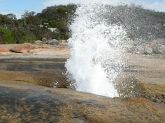 Bicheno Blowhole. Article and photo by Wayne and Julie Cartwright for www.think-tasmania.com