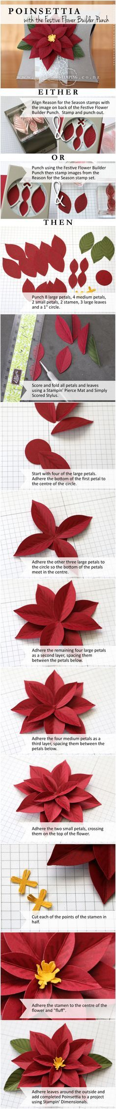 Create a Christmas Poinsettia with the Festive Flower Builder Punch and coordinating Reason for the Season stamp set. http://www3.stampinup.com/ECWeb/ProductDetails.aspx?productID=140847&dbwsdemoid=4002741   www.creativestamping.co.nz   Stampin' Up!   2015 Holiday Catalogue
